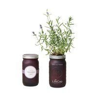 386338870-112 - Modern Sprout Indoor Herb Garden Kit - Emerald - thumbnail
